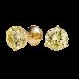 Fancy Yellow Diamond Stud Earrings